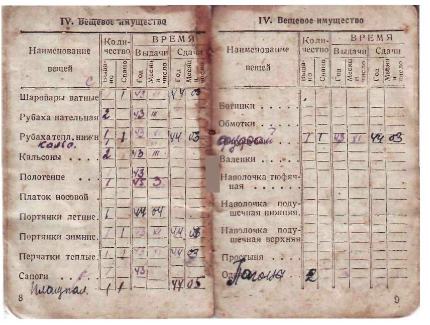 док.-Кирьянова10036